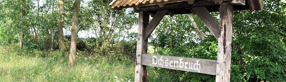 Banner_Broegbern_Ochsenbruch